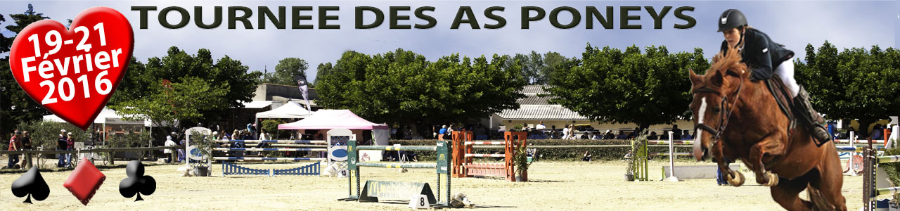 2016 galop tricastin tournee des as poneys 19 au 21 fev 2013